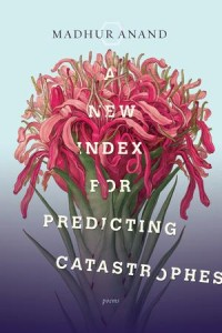A New Index for Predicting Catastrophes by Madha Anand