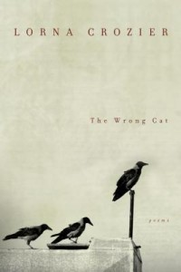 the wrong cat by lorna crozier