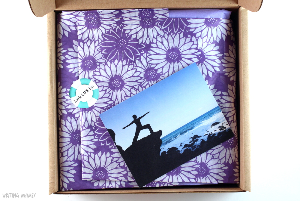 Little Life Box Review August 2015 8