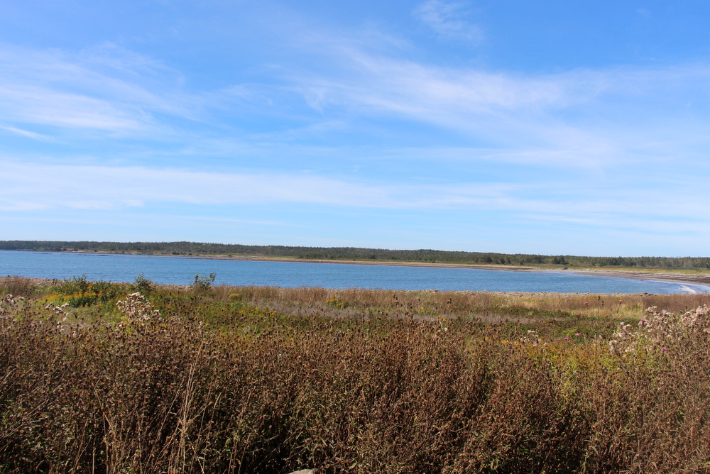 pond-cove-brier-island